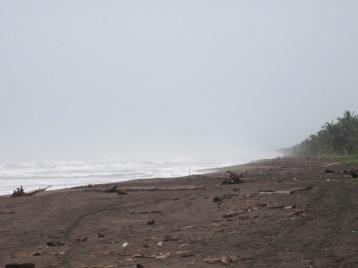 Schildi-Strand in Tortuguero