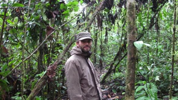 König des Dschungels?