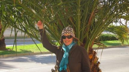 Sonne und Wind...genau richtig für meine neue Mütze