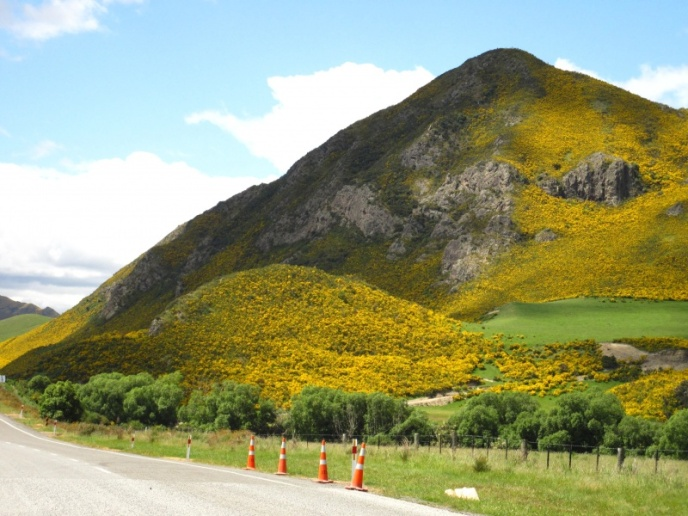 gelbleuchtender Berg