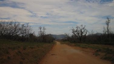 Outback-Feeling im Wilson Prom NP