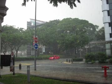 Der tägliche Regenguss um 15 Uhr