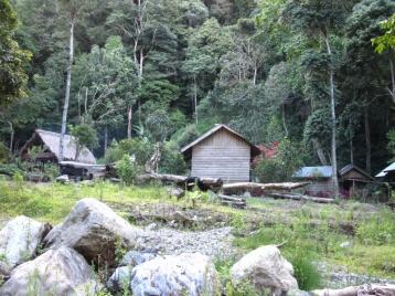 Rainforestlodge