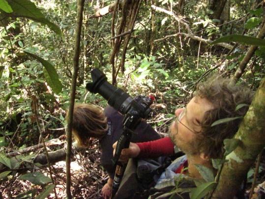 Udo und Stefan gebannt vom Anblick der Orang Dame