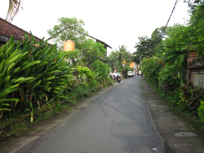 Gaesschen in Ubud