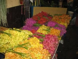 Nachtblumenmarkt