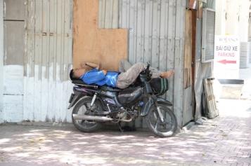 überall wird gern geschlafen...