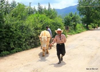 Auf dem Weg nach Baisha