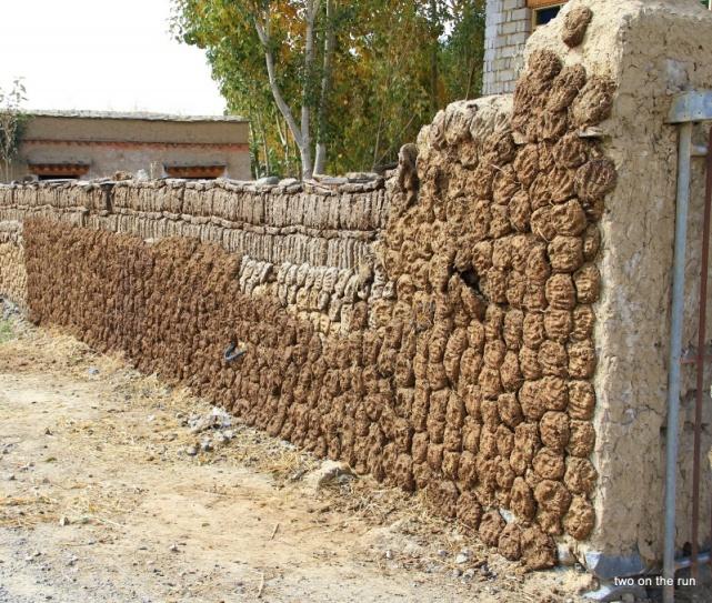 Yakkot zum Trocknen am Zaum