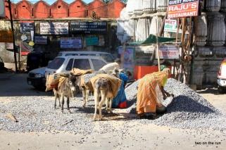 Udaipur - solche Arbeiten duerfen in Indien Frauen machen