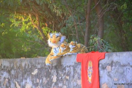 Die Tigerfamilie