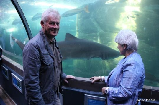 Aquarium in Cape Town