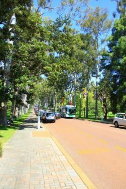 Perth - Kings Park