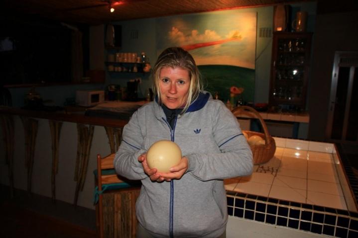 Das Ei des Strauß