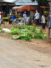 Zanzibar - Das Bananenmassaker