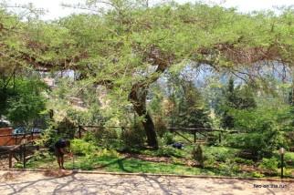 Unser Zeltplatz in Kigali