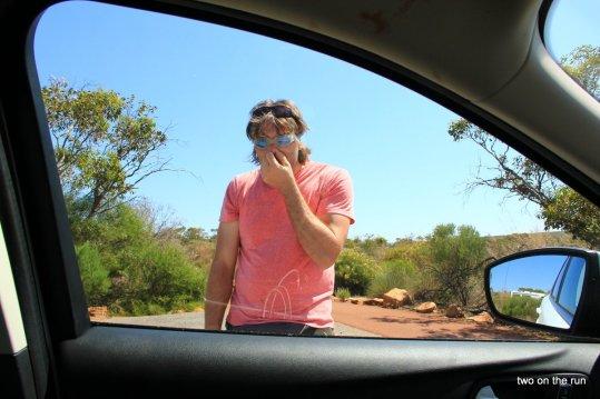Unterwegs mit Alex und Wolfgang in Western Australia - Kalbarri NP - Das Fliegenproblem