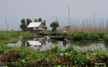 Inle Lake - schwimmende Gärten