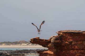 Broome - Gantheaume Point